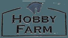 Hobby Farm Equestrian in Dorset